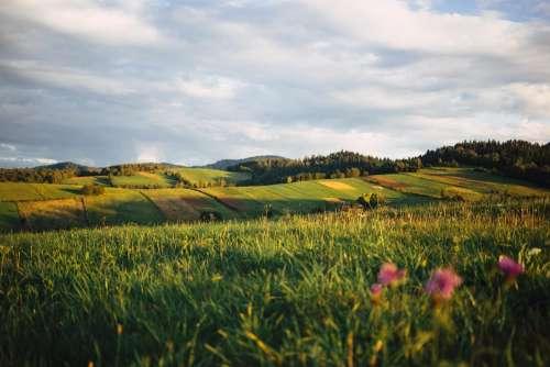 Fields in Bieszczady Mountains 2