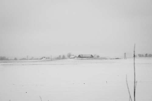 Foggy winter day in the field in black and white