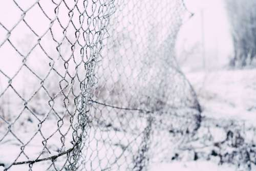Frosted old net fence