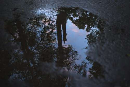 Reflection in the puddle