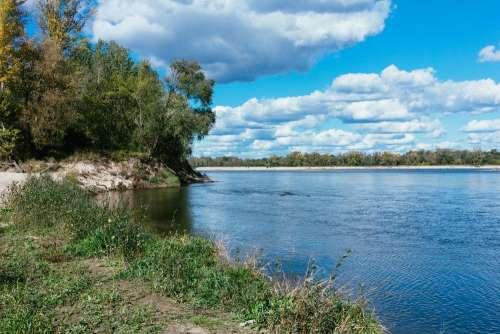 Riverbank flora