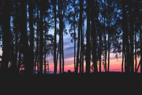 Sky at dusk 3
