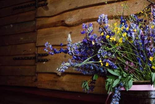 Wild lubine bouquet