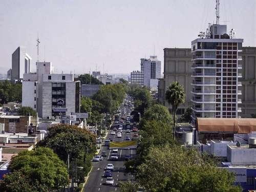 Avenida Vallarta in Guadalajara, Mexico free photo
