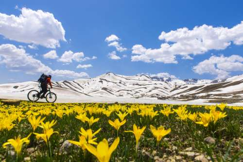 Biker going past Mountain landscape with flowers free photo