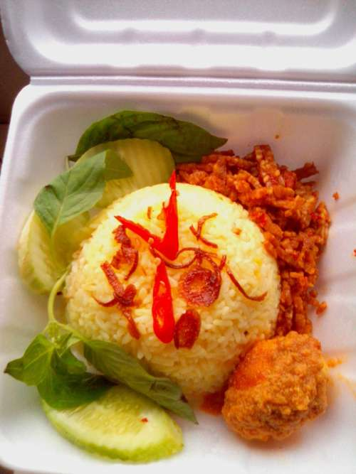 Boxed Lunch with rice and vegetables free photo