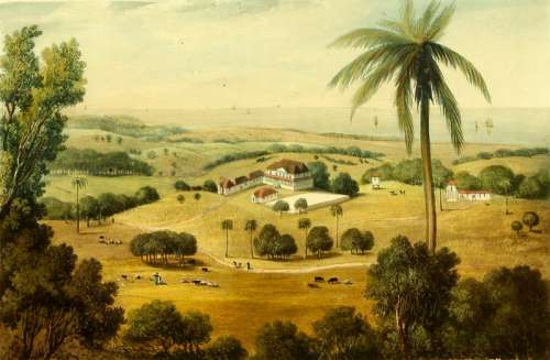 Cardiff Hall painting at St. Ann's Bay, Jamaica free photo