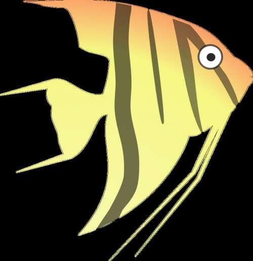Cartoon Angelfish vector clipart free photo