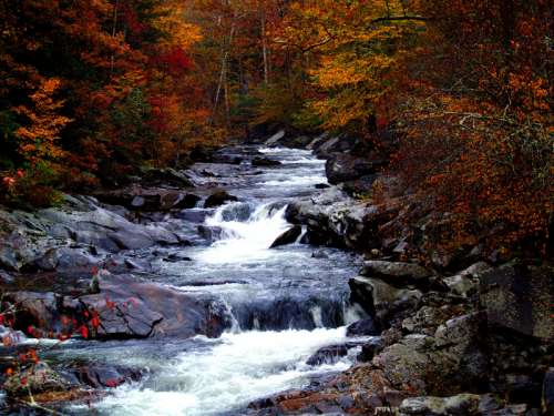 Cascading Rapids landscape in Great Smoky Mountains National Park, Tennessee free photo