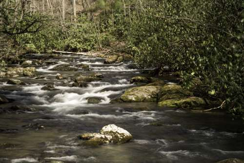 Cascading River Landscape in Great Smoky Mountains National Park, North Carolina free photo