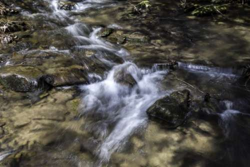 Cascading Water in Great Smoky Mountains National Park, North Carolina free photo