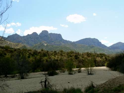Catalina State Park in Oro Valley in Arizona free photo