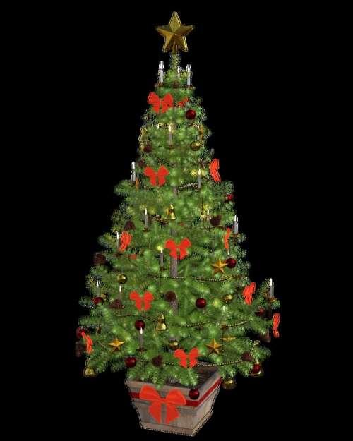 Christmas Tree 3d Model free photo