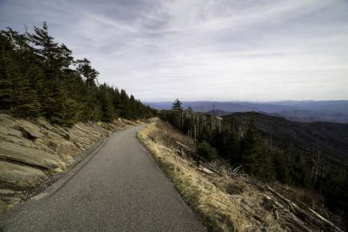 Clingman's Dome Trail to the top landscape in Great Smoky Mountains National Park, Tennessee free photo