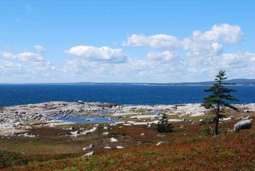Coastline Landscape in Nova Scotia, Canada free photo