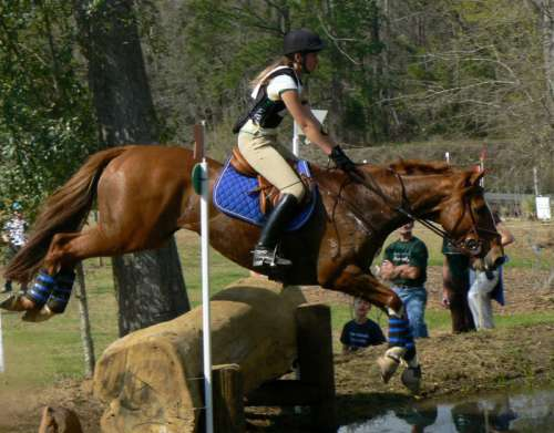 Cross-country riding competition at Red Hills Horse Trial in Tallahassee, Florida free photo