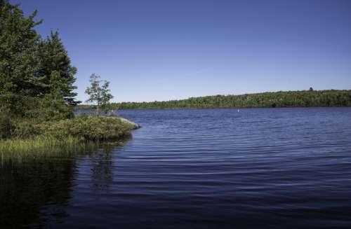 A curve in the lake at Van Riper State Park, Michigan free photo
