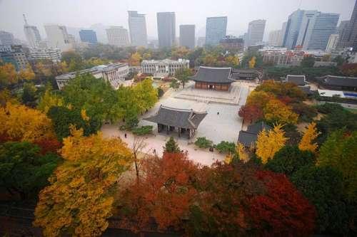 Deoksugung , Korean Palace in the Autumn in Seoul, South Korea free photo