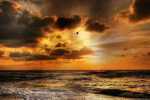 Orange Dusk Skies over the Ocean in Denmark free photo