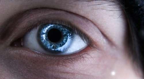 Blue Eye photo free photo
