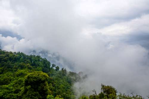 Fog and Clouds over the forest at Ravangla, India free photo