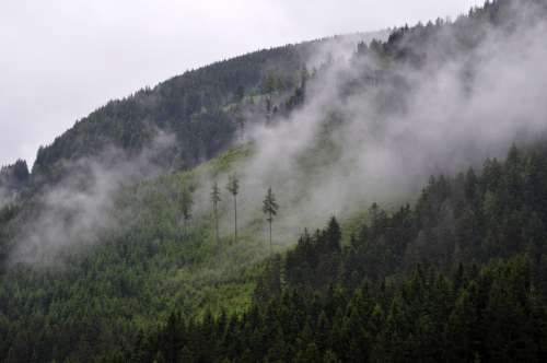 Fog rising up from the Mountainside free photo