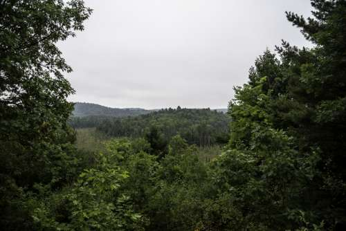 Foggy Overlook landscape at Algonquin Provincial Park, Ontario free photo