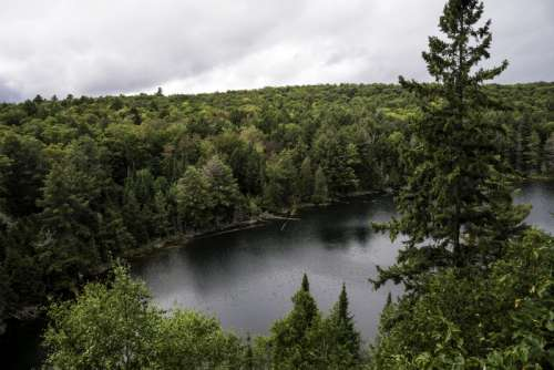 Forest and landscape and lake from Hemlock Bluff at Algonquin Provincial Park, Ontario free photo