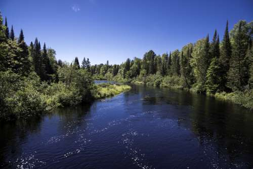 Forest and scenic river at Van Riper State Park, Michigan free photo