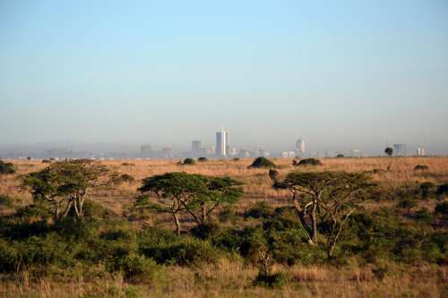 Game Preserve with Nairobi in the Background free photo