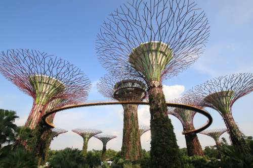 Gardens by the bay in Singapore free photo