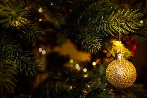 Golden Tree Christmas Ornament  free photo