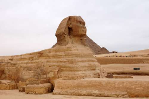 Great Sphinx of Giza, Egypt free photo