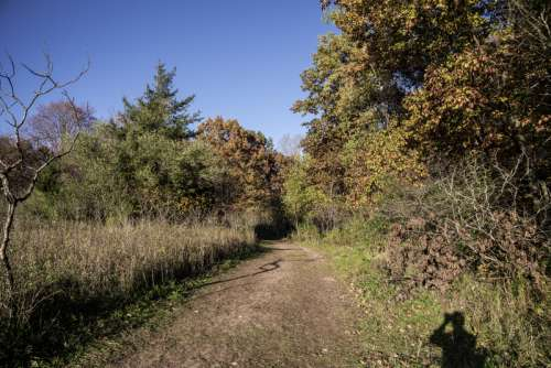 Hiking Trail at Pike Lake State Park, Wisconsin free photo