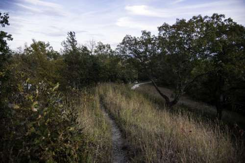 Hiking Trail landscape at Ferry Bluff, Wisconsin free photo