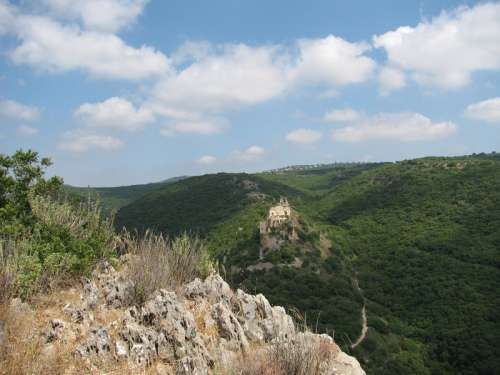 Hills and Trees in Israel free photo