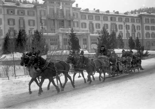 Horses pulling sleigh in the winter in St. Moritz, Switzerland free photo