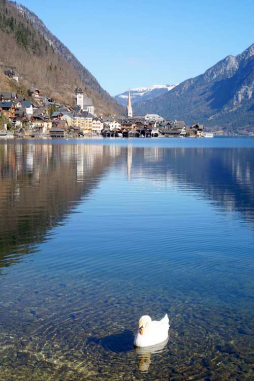 Lake and Mountain landscape with a town on the other side in Hallstatt, Austria free photo