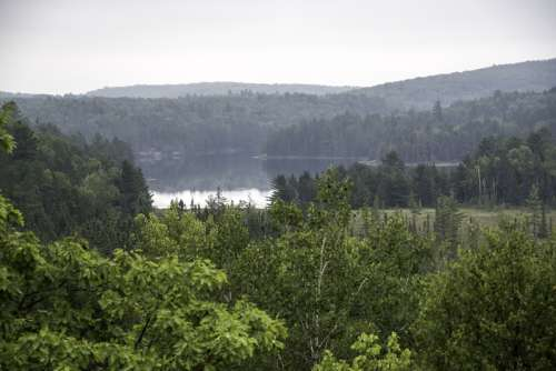 Lake landscape on a foggy day in Algonquin Provincial Park, Ontario free photo