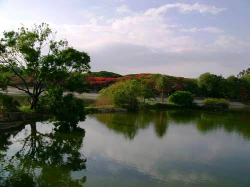 Lakeview of Lalbagh Park in Bangalore, India free photo
