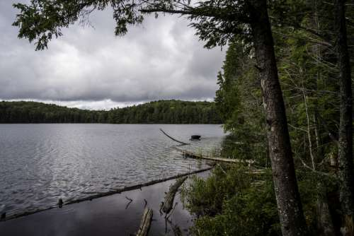 Landscape of Jack Lake in Algonquin Provincial Park, Ontario free photo