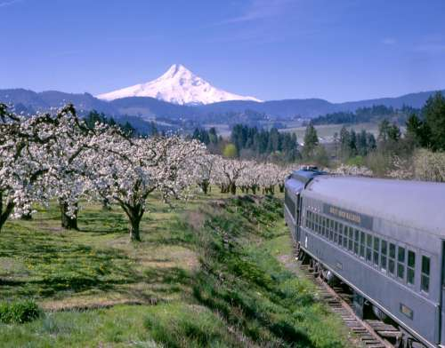 Landscape of Mount Hood from the railroad in Oregon free photo
