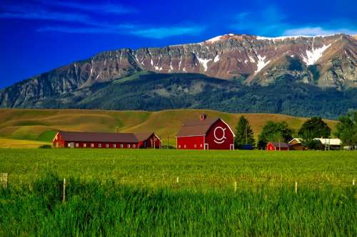 Landscape of the farm with mountains behind in Oregon free photo