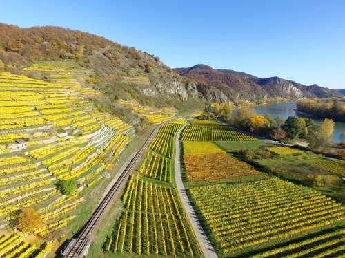Landscape with Farm and Terraces in Durnstein, Niederosterreich, Austria free photo