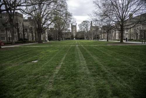 Lawn and Grass of the Duke Quad with the Chapel in the distance in Durham, North Carolina free photo