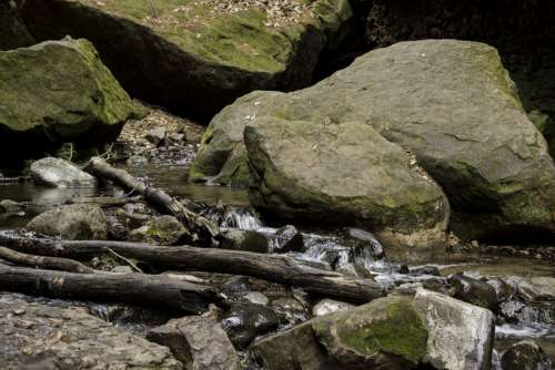 Logs, rocks, and creek at Parfrey's Glen, Wisconsin free photo