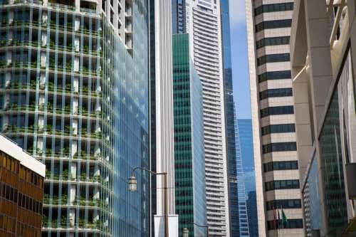 Looking at tall towers in Singapore free photo