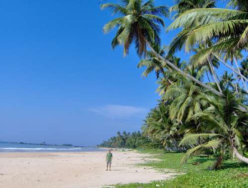 Matara Beach landscape, Sri Lanka free photo