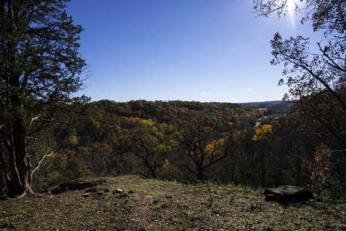 Morton County Forest Overlook in Wisconsin free photo