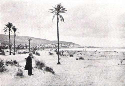 Mount Carmel before 1899 in Haifa, Israel free photo